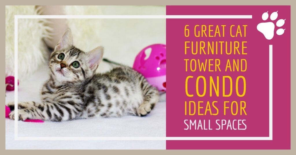Great Cat Furniture Tower And Condo Ideas For Small Spaces Header