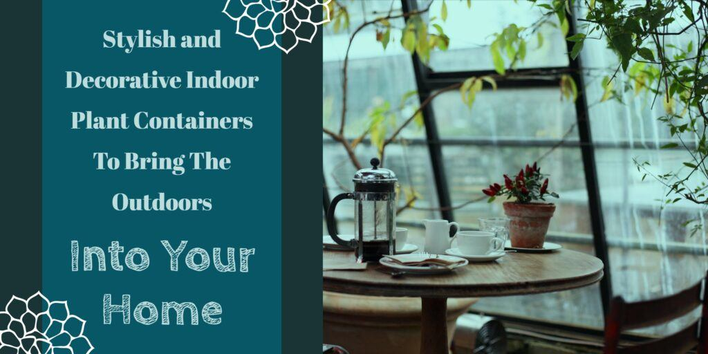 Stylish And Decorative Indoor Plant Containers Header