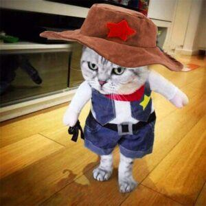 Cowboy Jacket Suit Cat Costume