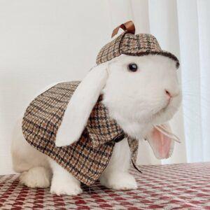 Sherlock Holmes Rabbit Detective Costume