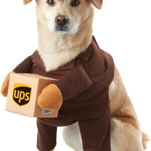 Special Delivery Pal Dog Costume