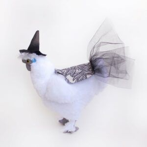 Halloween Witch Tutu For Chickens