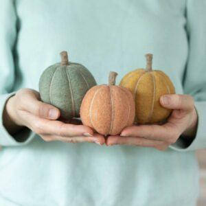 Decorative Fall Pumpkin Felting Kit